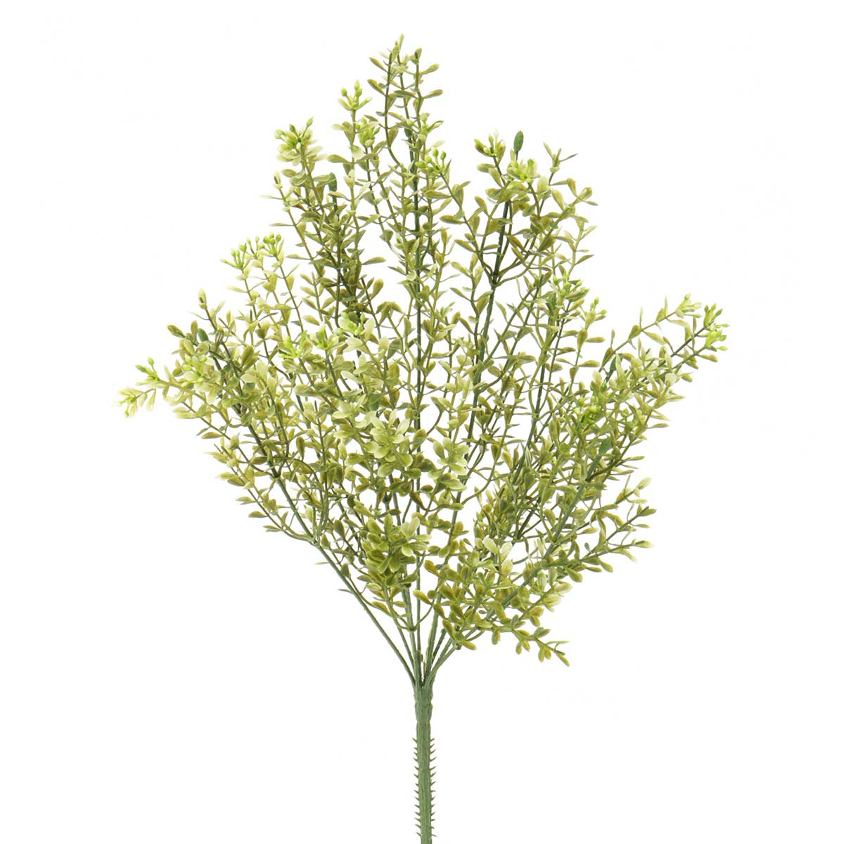 "Mini Boxwood Bush X9 10""x18.5"" Light Green"